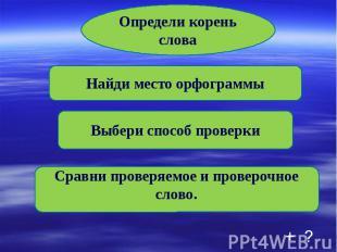Определи корень слова Найди место орфограммы Выбери способ проверки Сравни прове