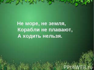 Не море, не земля, Корабли не плавают, А ходить нельзя.
