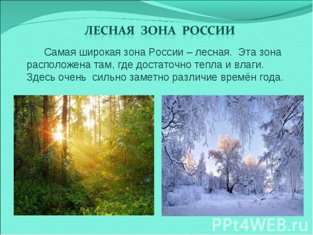 Лесная зона России Самая широкая зона России – лесная. Эта зона расположена там, где достаточно тепла и влаги. Здесь очень сильно заметно различие времён года.