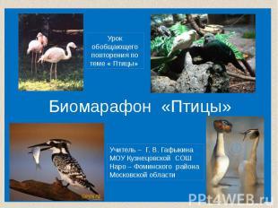 Биомарафон «Птицы» Урок обобщающегоповторения по теме « Птицы» Учитель – Г. В. Г