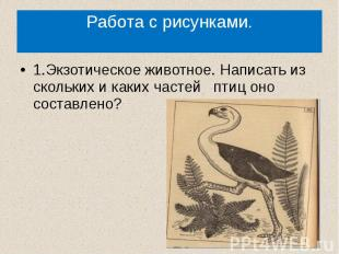 Работа с рисунками.1.Экзотическое животное. Написать из скольких и каких частей
