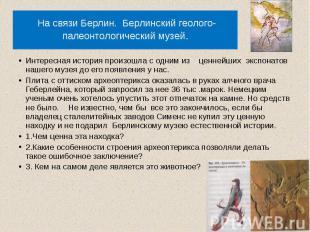 На связи Берлин. Берлинский геолого- палеонтологический музей. Интересная истори