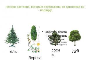 http://ppt4web.ru/muzyka/puteshestvie-k-muzykalnomu-sozvezdiju.html ель береза с