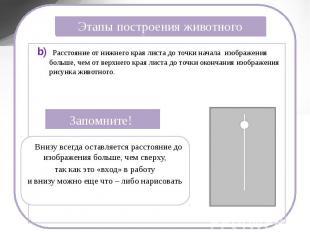 Этапы построения животного b) Расстояние от нижнего края листа до точки начала и