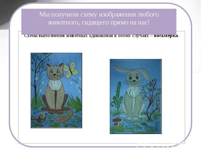 Мы получили схему изображения любого животного, сидящего прямо на нас! Схема выполнения животных одинаковая в обоих случаях – восьмерка.