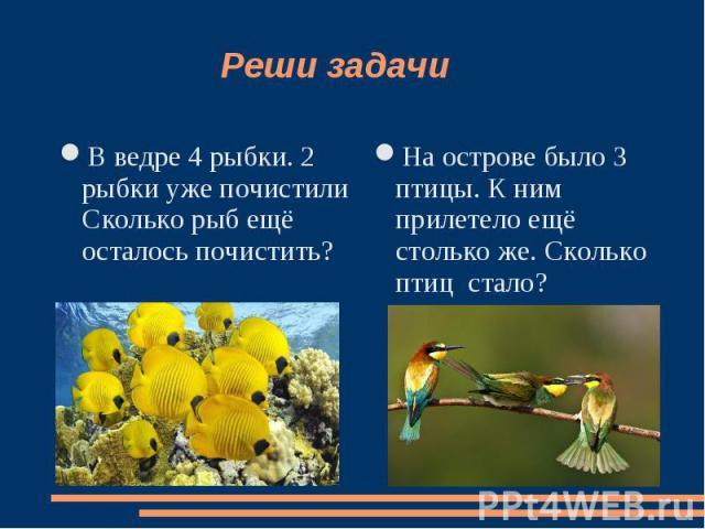 Реши задачи В ведре 4 рыбки. 2 рыбки уже почистили Сколько рыб ещё осталось почистить? На острове было 3 птицы. К ним прилетело ещё столько же. Сколько птиц стало?