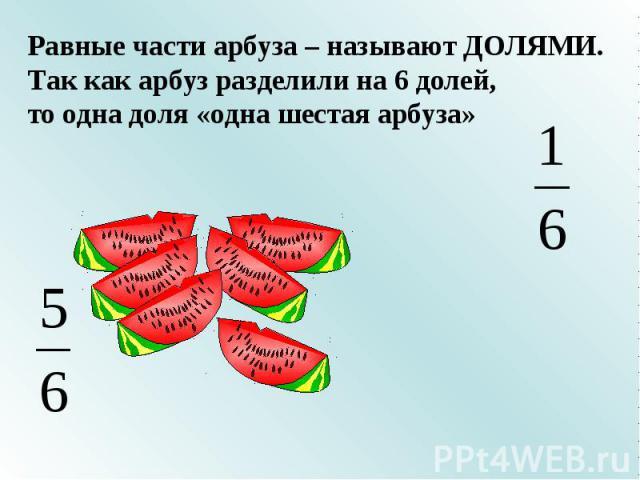 Равные части арбуза – называют ДОЛЯМИ.Так как арбуз разделили на 6 долей, то одна доля «одна шестая арбуза»