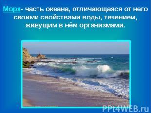 Моря- часть океана, отличающаяся от него своими свойствами воды, течением, живущ