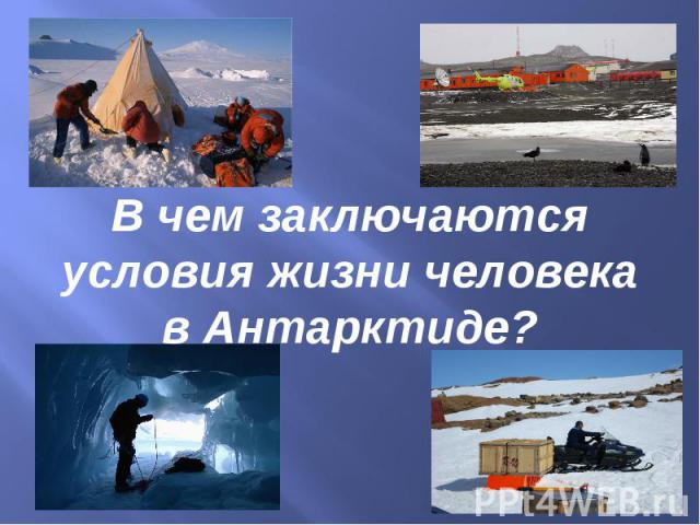 В чем заключаются условия жизни человека в Антарктиде?