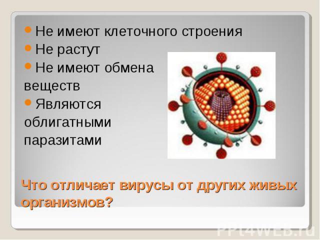 Не имеют клеточного строенияНе растутНе имеют обменавеществЯвляютсяоблигатнымипаразитами Что отличает вирусы от других живых организмов?