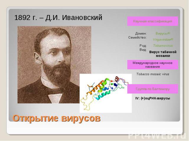 1892 г. – Д.И. Ивановский Открытие вирусов