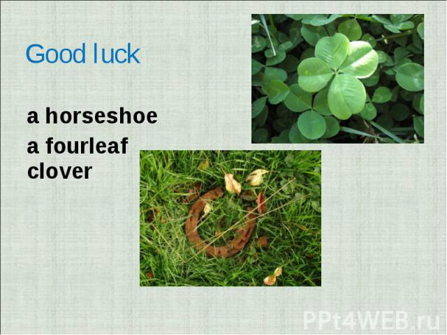 Good luck a horseshoea fourleaf clover