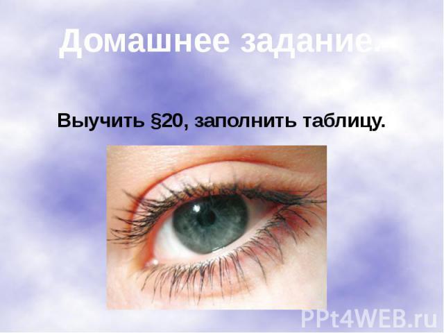 Выучить §20, заполнить таблицу.