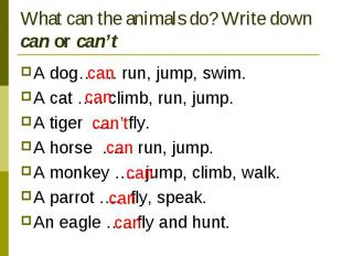 What can the animals do? Write down can or can't A dog……. run, jump, swim.A cat