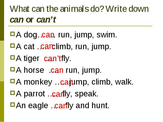 What can the animals do? Write down can or can't A dog……. run, jump, swim.A cat ….. climb, run, jump.A tiger …. fly.A horse …. run, jump.A monkey …. jump, climb, walk.A parrot …. fly, speak.An eagle ….. fly and hunt.
