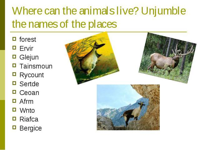 Where can the animals live? Unjumble the names of the places forest Ervir Glejun Tainsmoun Rycount Sertde Ceoan Afrm Wnto Riafca Bergice