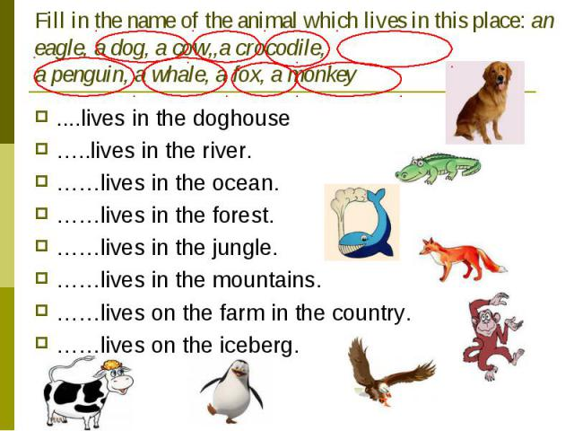 Fill in the name of the animal which lives in this place: an eagle, a dog, a cow,,a crocodile, a penguin, a whale, a fox, a monkey ....lives in the doghouse…..lives in the river.……lives in the ocean.……lives in the forest.……lives in the jungle.……live…