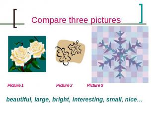 Compare three pictures Picture 1 Picture 2 Picture 3beautiful, large, bright, in
