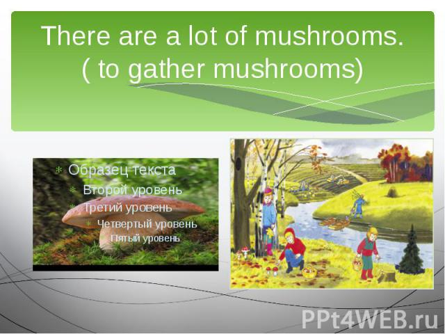 There are a lot of mushrooms.( to gather mushrooms)We are going to …