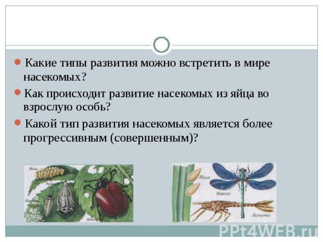 Какие типы развития можно встретить в мире насекомых?Как происходит развитие насекомых из яйца во взрослую особь?Какой тип развития насекомых является более прогрессивным (совершенным)?