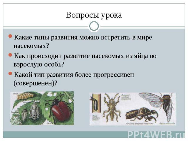 Какие типы развития можно встретить в мире насекомых?Как происходит развитие насекомых из яйца во взрослую особь?Какой тип развития более прогрессивен (совершенен)?