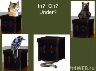In? On?Under?