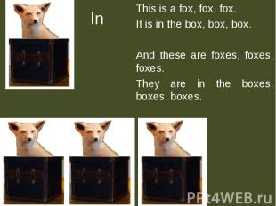In This is a fox, fox, fox.It is in the box, box, box.And these are foxes, foxes