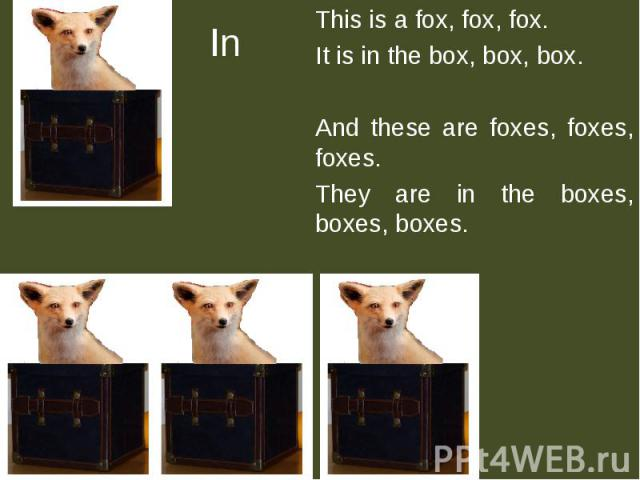 In This is a fox, fox, fox.It is in the box, box, box.And these are foxes, foxes, foxes.They are in the boxes, boxes, boxes.