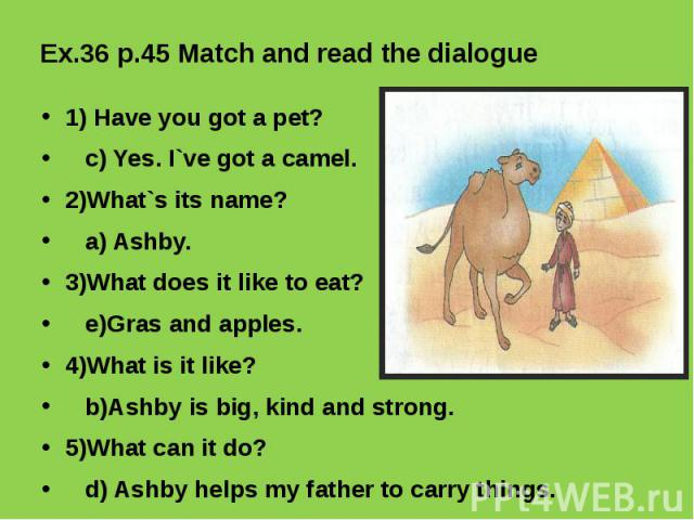Ex.36 p.45 Match and read the dialogue 1) Have you got a pet? c) Yes. I`ve got a camel. 2)What`s its name? a) Ashby.3)What does it like to eat? e)Gras and apples.4)What is it like? b)Ashby is big, kind and strong.5)What can it do? d) Ashby helps my …