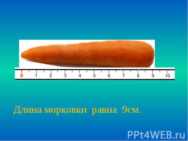 Длина морковки равна 9см.