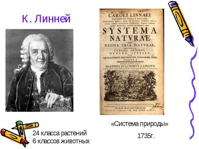 К. Линней 24 класса растений6 классов животных «Система природы» 1735г.