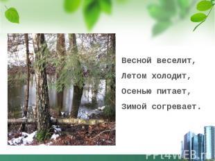 Весной веселит,Летом холодит,Осенью питает, Зимой согревает.