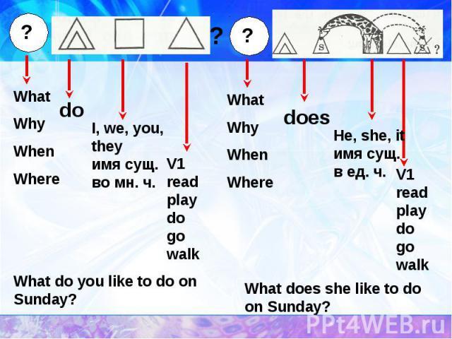 WhatWhyWhenWhere I, we, you, theyимя сущ. во мн. ч.V1readplaydogowalk What do you like to do on Sunday?He, she, itимя сущ. в ед. ч. What does she like to do on Sunday?