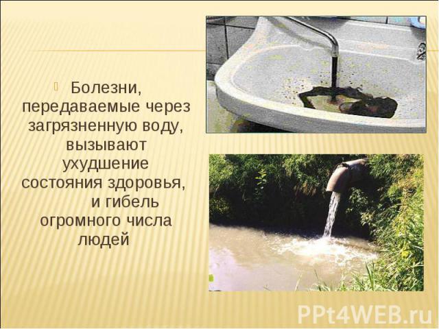 Болезни, передаваемые через загрязненную воду, вызывают ухудшение состояния здоровья, и гибель огромного числа людей