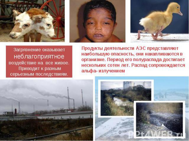 Загрязнение оказывает неблагоприятное воздействие на все живое. Приводит к разным серьезным последствиям. Продукты деятельности АЭС представляют наибольшую опасность, они накапливаются в организме. Период его полураспада достигает нескольких сотен л…