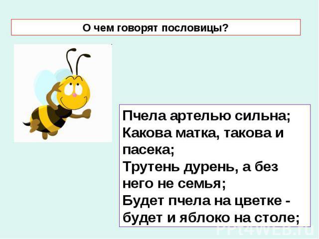 О чем говорят пословицы? Пчела артелью сильна; Какова матка, такова и пасека; Трутень дурень, а без него не семья; Будет пчела на цветке - будет и яблоко на столе;