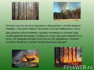 Летом у нас из-за неосторожного обращения с огнём бывают пожары. Они уничтожают