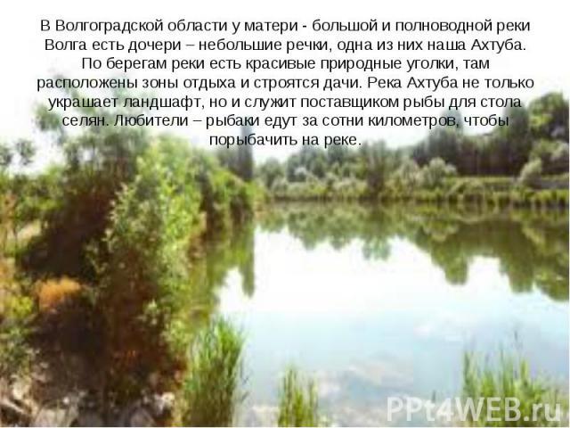 В Волгоградской области у матери - большой и полноводной реки Волга есть дочери – небольшие речки, одна из них наша Ахтуба. По берегам реки есть красивые природные уголки, там расположены зоны отдыха и строятся дачи. Река Ахтуба не только украшает л…