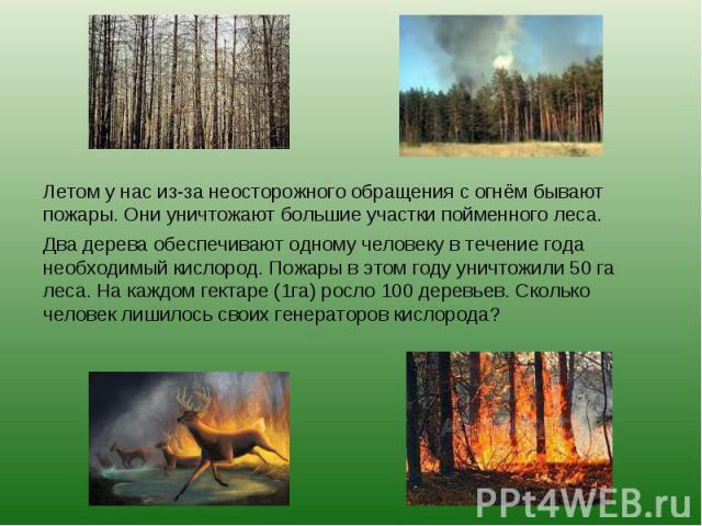 Летом у нас из-за неосторожного обращения с огнём бывают пожары. Они уничтожают большие участки пойменного леса.Два дерева обеспечивают одному человеку в течение года необходимый кислород. Пожары в этом году уничтожили 50 га леса. На каждом гектаре …
