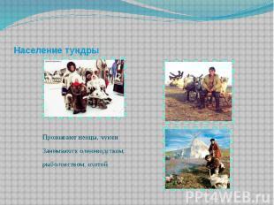 Население тундры Проживают ненцы, чукчиЗанимаются оленеводством, рыболовством, о