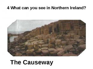 4 What can you see in Northern Ireland? The Causeway