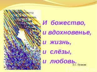 И божество,и вдохновенье, и жизнь, и слёзы, и любовь.