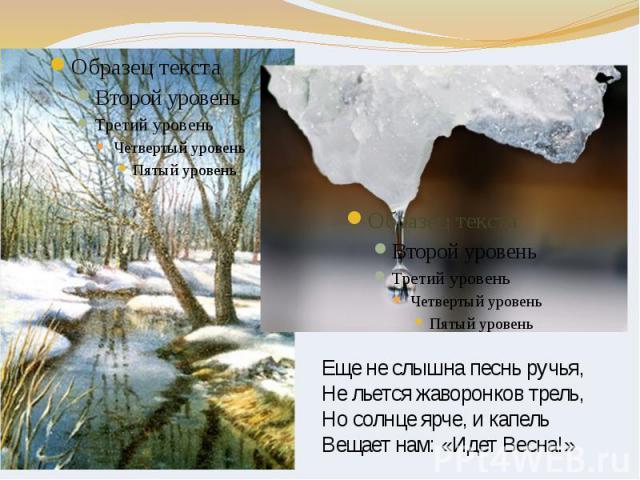 Еще не слышна песнь ручья,Не льется жаворонков трель, Но солнце ярче, и капельВещает нам: «Идет Весна!»