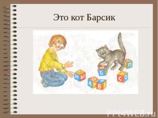 Это кот Барсик