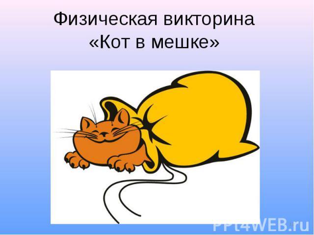 Физическая викторина «Кот в мешке»