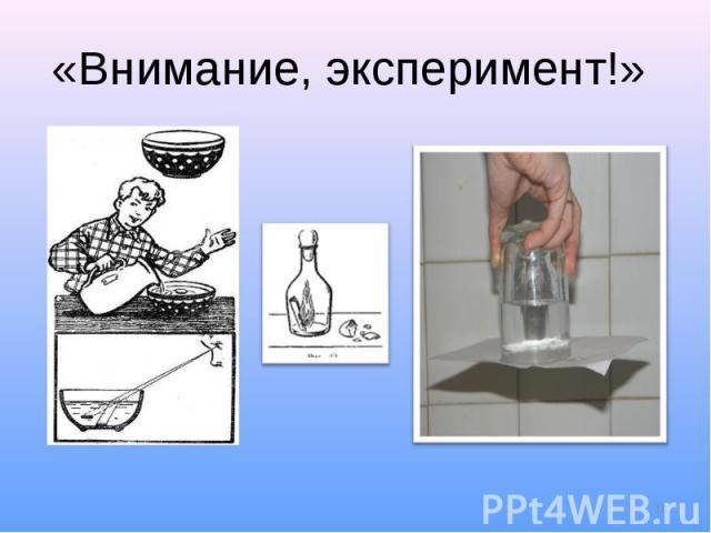 «Внимание, эксперимент!»