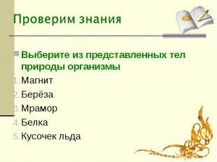 Выберите из представленных тел природы организмыМагнитБерёзаМраморБелкаКусочек л