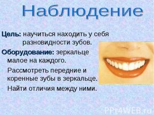 Наблюдение Цель: научиться находить у себя разновидности зубов.Оборудование: зер