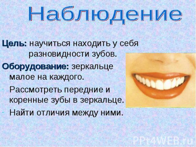 Наблюдение Цель: научиться находить у себя разновидности зубов.Оборудование: зеркальце малое на каждого.Рассмотреть передние и коренные зубы в зеркальце.Найти отличия между ними.