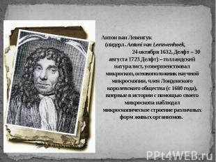 Антон ван Левенгук (нидерл. Antoni van Leeuwenhoek, 24 октября 1632, Делфт – 30